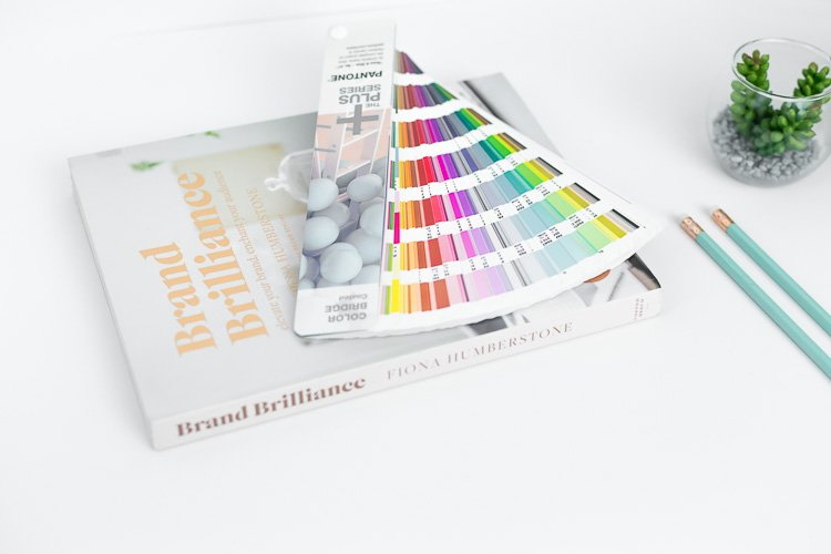 5 Reasons Why You Need a Niche a branding book with paint swatches